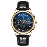 Men's Automatic Luxury Watch