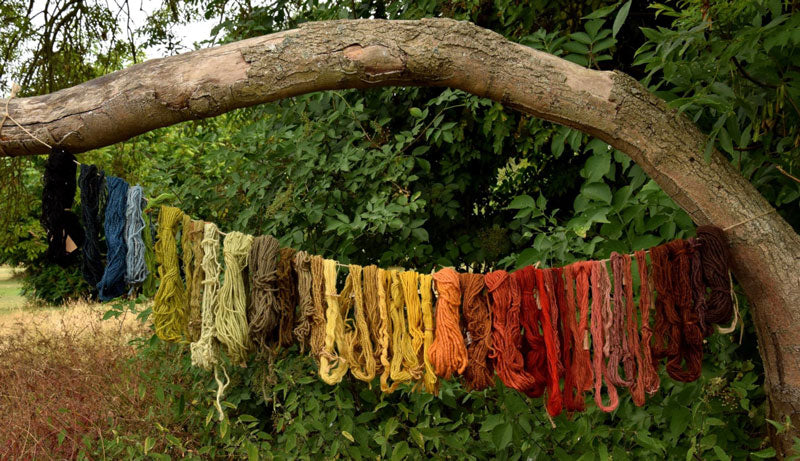 Wools recently dyed air drying