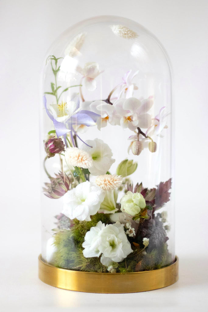 Cloche Workshop: November 24th (Sunday) from 2:30PM - 4:30PM - Wild North Flowers, LP