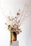 Dried Flower Arranging Workshop: March 22nd (Sunday) from 2:00PM - 4:00PM