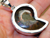 Ammonite Fossil & 925 Sterling Silver Pendant