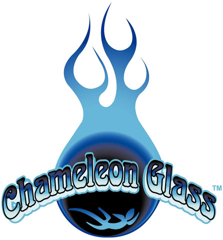 Clear Bowl by Chameleon Glass