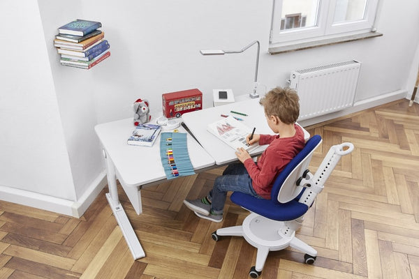Ideas for the kid's study room