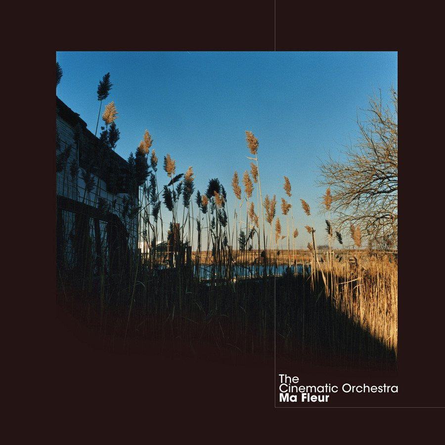 The Cinematic Orchestra ‎– Ma Fleur | RSD2017