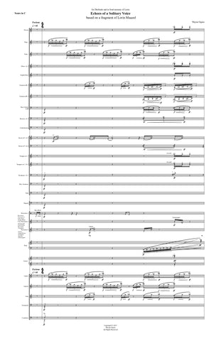 Echoes of a Solitary Voice (Score Only)