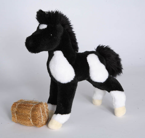 Black & White Paint Foal