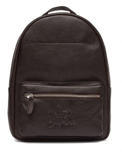Mens Brown Backpack