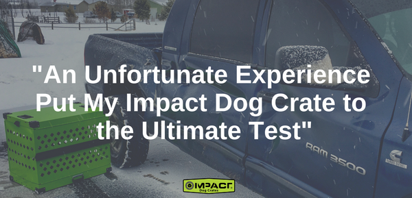 an unfortunate car accident put my impact dog crate to the test