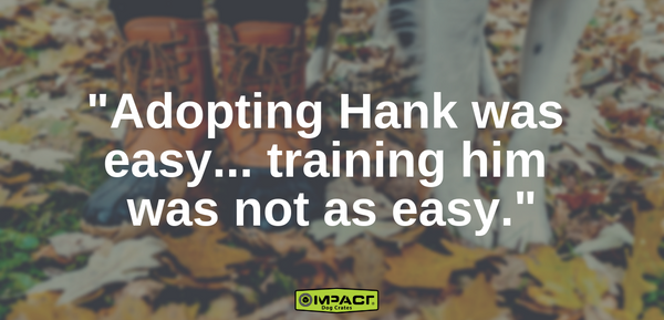 adopting hank was easy training him was not as easy