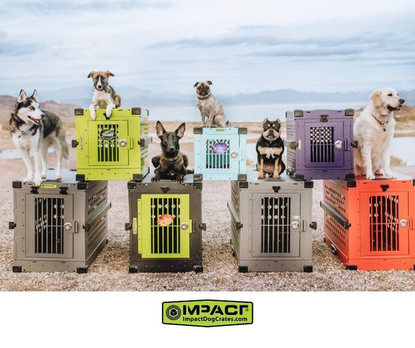 Vote for Your Favorite Impact Dog Crate to be Entered to Win a Crate of Your Choice!