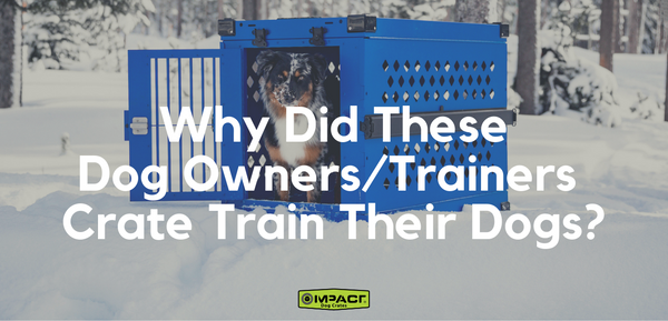 Why Did These Dog Owners and Trainers Crate Train Their Dogs?