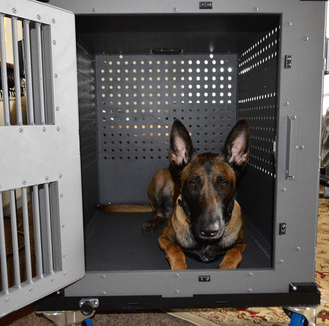 Excellent This family's Belgian Malinois needed a High Anxiety dog crate  WK42