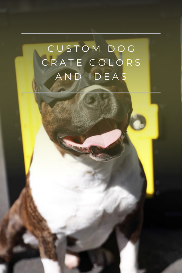 custom dog crate colors and ideas