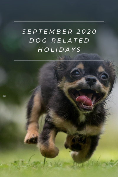 september 2020 dog related holidays