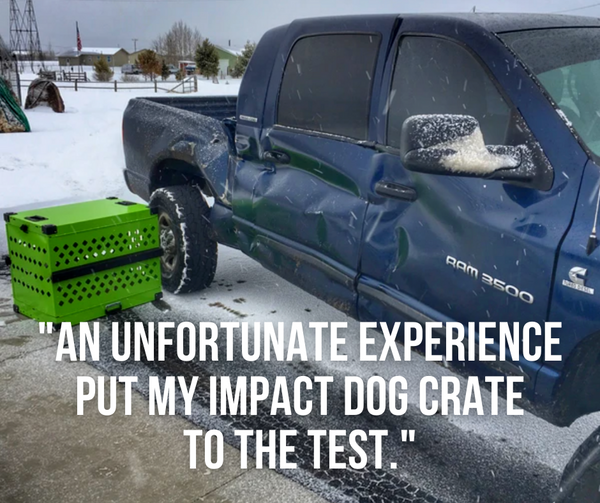 an unfortunate experience put my impact dog crate to the test blog