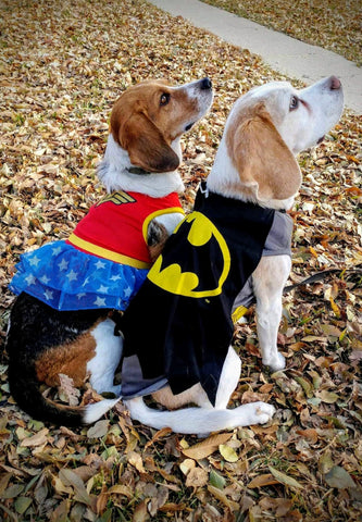 beagles in halloween costumes