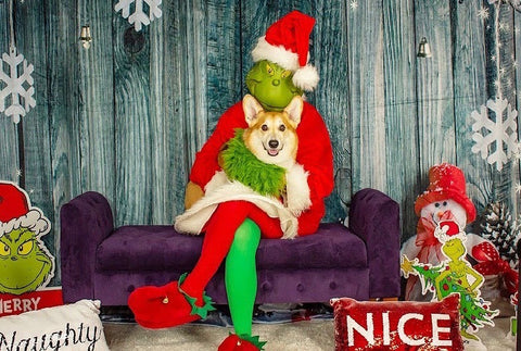 grinch who stole corgi