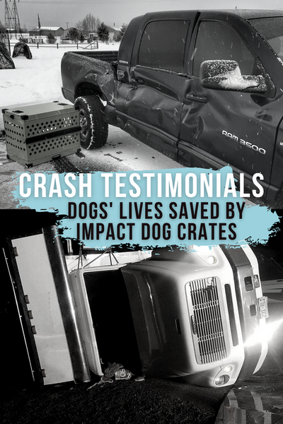 crash testimonials dogs lives saved by impact dog crates