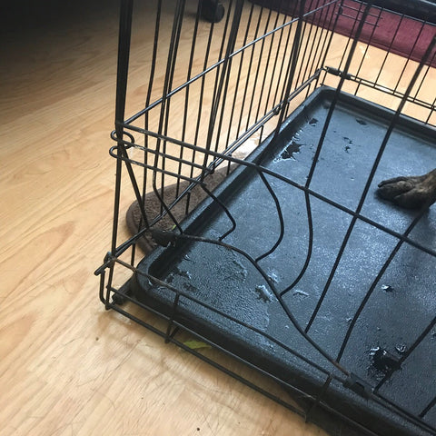 damaged wire dog crate
