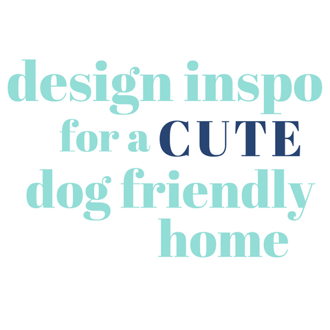 design inspo for a cute dog friendly home