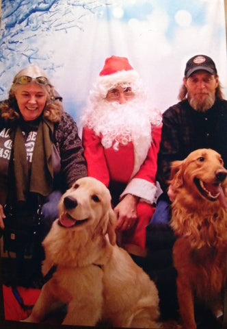 golden retrievers meet santa