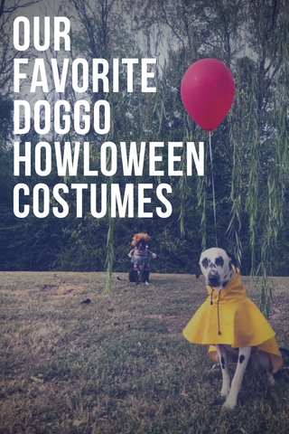 our favorite doggo howloween costumes pinterest