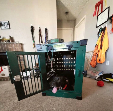 forest green collapsible impact dog crate