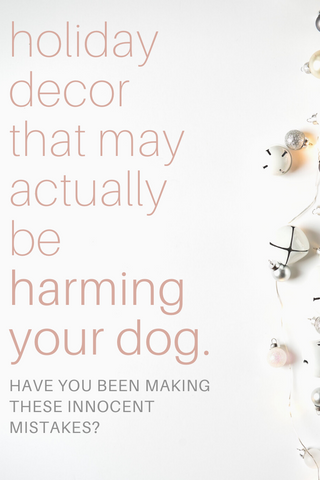 holiday decor that may be harming your dog