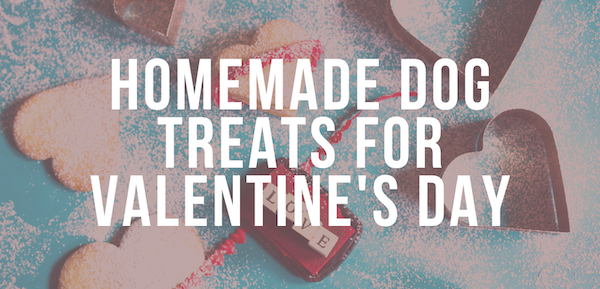 homemade dog treats for valentines day