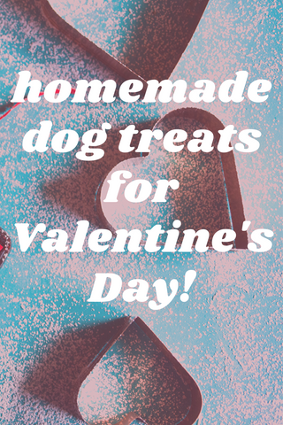 homemade dog treats for valentines day pinterest