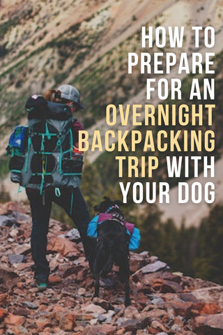 how to prepare for an overnight backpacking trip with your dog