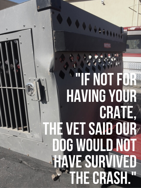 if not for having your crate the vet said our dog would not have survived the crash blog testimonial