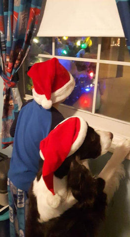 kid and dog looking for santa