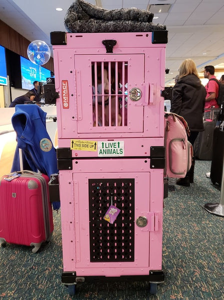 pink collapsible and side door stationary impact dog crates stacked in airport with wheel cart