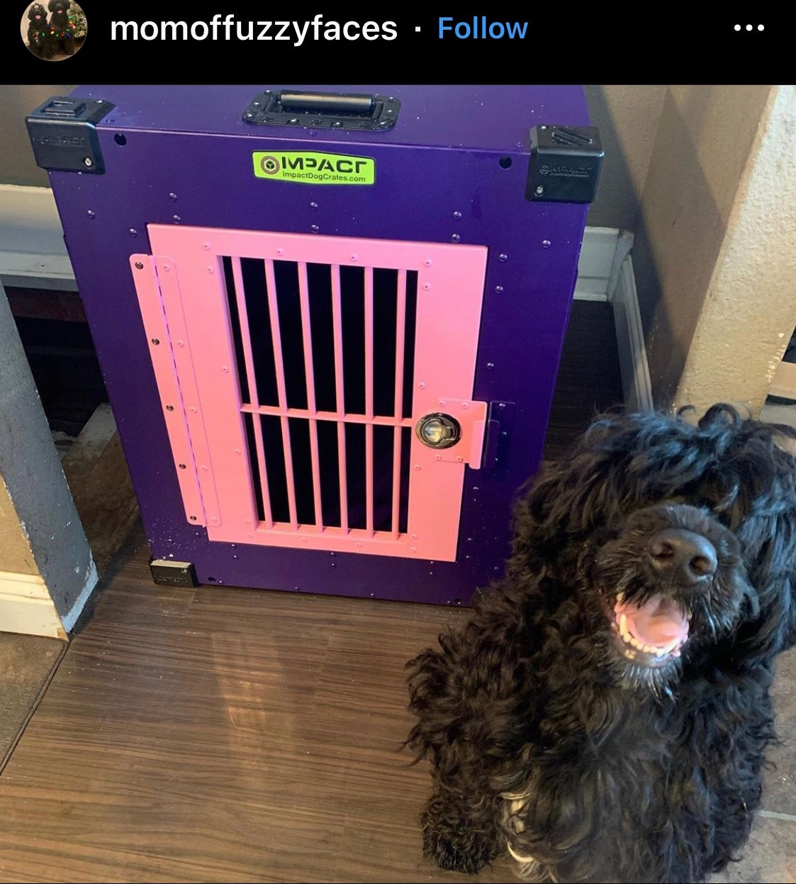 purple pink crate