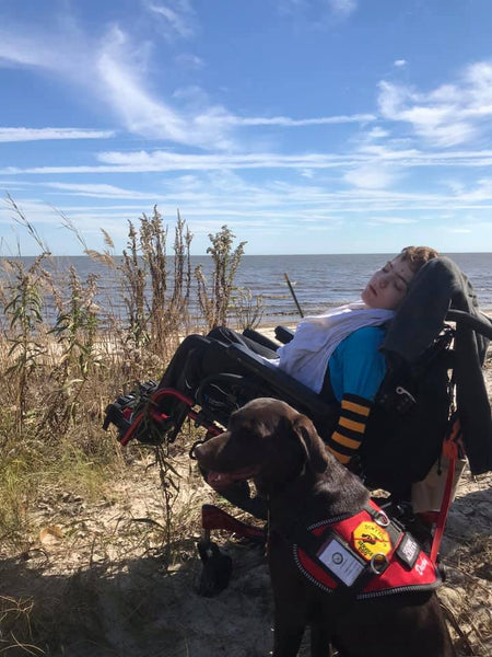 service dog and boy at beach