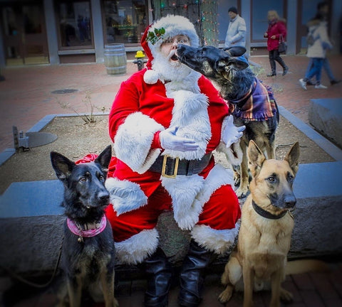 shepherds with santa