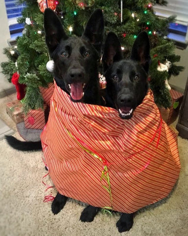 shepherds in wrapping paper