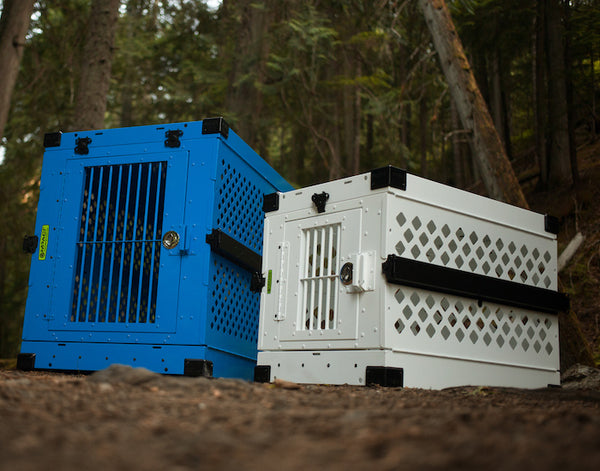 sky blue collapsible crate next to white dog crate