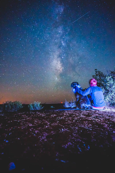 starry night sky in texas with girl and dog