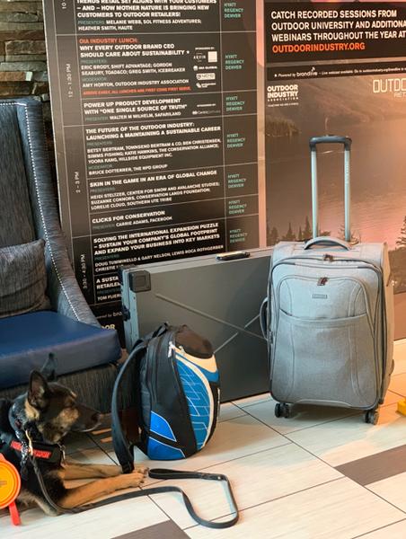 how to fly with collapsible impact dog crate as luggage