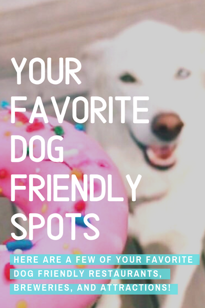 your favorite dog friendly spots