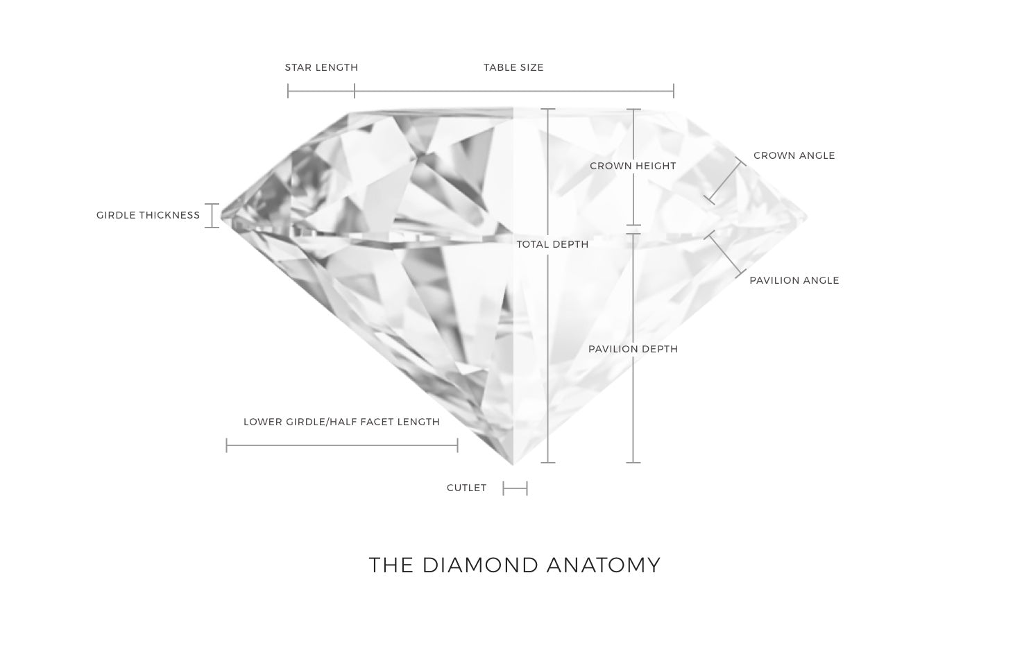 The Diamond Anatomy