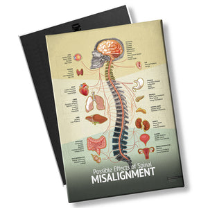 "Chiropractic ""Misalignment"" Spine, Organ, Nerve Chart"