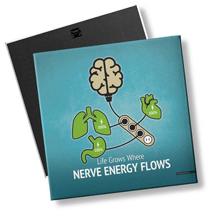 Nerve Energy and Organ Health - MyChiroPractice | Chiropractic Posters