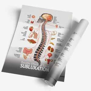 "Chiropractic ""Subluxation"" Spine, Organ, Nerve Chart"