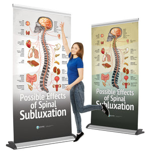 "Chiropractic ""Subluxation"" Retractable Banner for Spinal Screenings, Fairs, and Events"