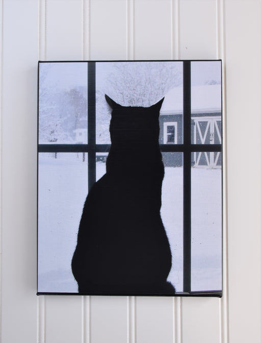 Cat Looking out a Window Canvas Photo | Cat Lover Gift