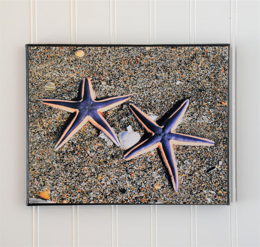 Purple Starfish Canvas Photo | Beach Lovers Gift