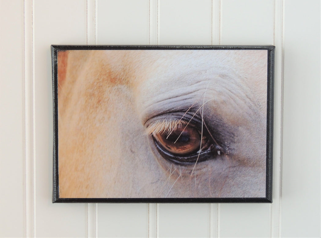Canvas Photo Closeup of Horse Eye | Horse Lover Gift